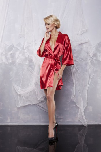 Dressing-gown 90 13